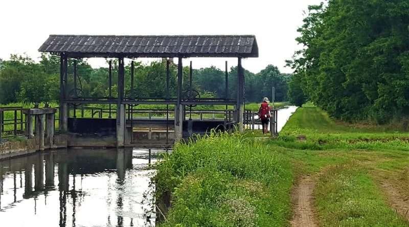 Un pellegrino che cammina sulla Via Francigena lungo un canale di irrigazione