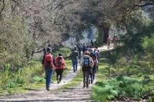 Cammino della Via Francigena