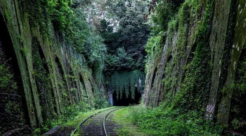 Turismo lento Via Francigena
