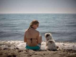 Via Francigena con il cane